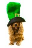 выследите зеленый шлем Стоковые Изображения RF
