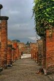 выслеживает pompeii Стоковое фото RF