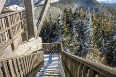 Высокая деревянная наблюдательная вышка с платформой просмотра na górze лыжного курорта Semmering, Австрии стоковое изображение rf