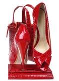высокая женщина ботинка Стоковые Изображения