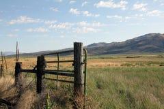 Высокая загородка пустыни Стоковые Фотографии RF