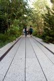 Высокая линия город New York Повышенный пешеходный парк Стоковые Изображения RF