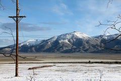 Высокая пустыня в зиме Стоковая Фотография