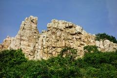 Высокая скала над деревьями Стоковые Фото
