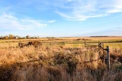 Высокая трава за деревянной загородкой, загородкой журнала, скошенным полем Стоковые Фотографии RF