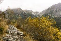 Высокие горы Tatra в Словакии в осени Стоковое фото RF