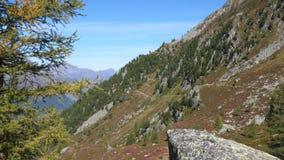 Высокие пики массива долины и Монблана Шамони в деревне Шамони в Франции сток-видео