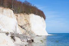 Высокие скалы мелка на побережье Ruegen Стоковые Фото
