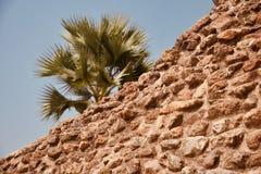 Высокие старые кирпичи сделали фото изолированное структурой уникаль стоковые фотографии rf