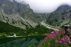 высокие tatras Словакия Красивое зеленое озеро Стоковые Изображения