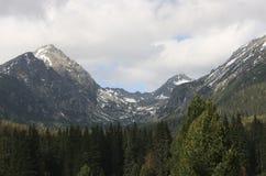 высокие tatras Стоковые Изображения