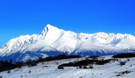 высокие tatras Стоковая Фотография