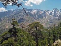 Высокий пейзаж горного вида с острыми пиками стоковые изображения rf