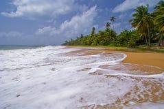 высокий прибой Пуерто Рико стоковые изображения