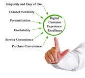 Высокий профессионализм опыта клиента цифров стоковые изображения rf