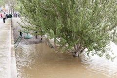 Высокий уровень воды в Сене Стоковое Изображение RF