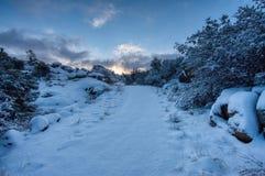 Высокий Prescott Аризона сцены зимы пустыни стоковые фото