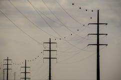 Высоковольтная башня передачи электроэнергии Стоковая Фотография