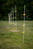 Высоковольтная защитная загородка против медведей Стоковые Изображения RF