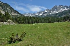 Высокогорная долина Vall-de-Madriu-Perafita-Claror, Пиренеи стоковая фотография