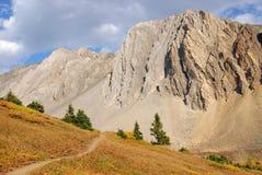 высокогорная hiking тропка лужка Стоковые Фотографии RF
