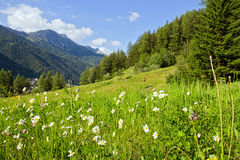 высокогорное временя гор Стоковые Изображения