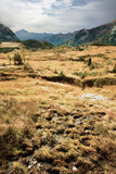 высокогорное место ландшафтов Стоковые Фотографии RF