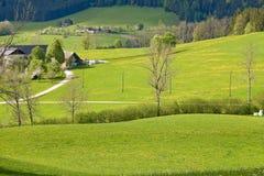 высокогорное сельскохозяйственное угодье Стоковые Фото