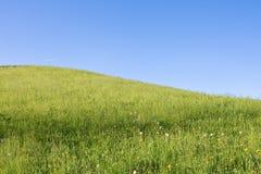 высокогорное сельскохозяйственное угодье Стоковые Изображения