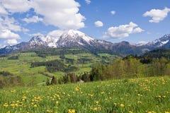 высокогорное сельскохозяйственное угодье Стоковая Фотография RF