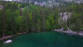 Высокогорные виды на озеро Lac Vert Шамони Франции сток-видео
