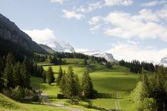 Высокогорные луга около Kleine Schedegg, Швейцарии Стоковое Изображение RF