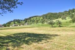 Высокогорные луг и деревня, Словения Стоковые Изображения RF