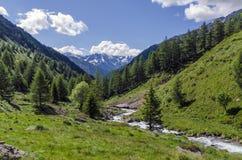 Высокогорный ландшафт горных пиков высоких гор на ясном лете, солнечном дне. Стоковые Фотографии RF