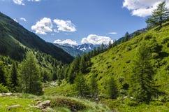 Высокогорный ландшафт горных пиков высоких гор на ясном лете, солнечном дне. Стоковая Фотография RF