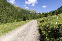 Высокогорный ландшафт луга высоких гор на ясном лете, солнечном дне. Стоковая Фотография