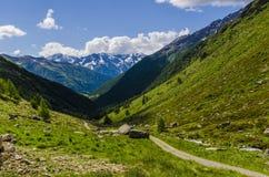 Высокогорный ландшафт луга высоких гор на ясном лете, солнечном дне. Стоковое Изображение RF