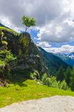 Высокогорный ландшафт луга высоких гор на ясном лете, солнечном дне. Стоковое Изображение