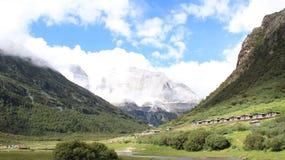 высокогорный ледник и лес Стоковое Изображение