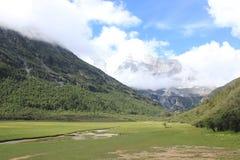высокогорный ледник и злаковик Стоковое Изображение RF