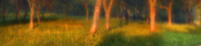 высокогорный заход солнца Стоковая Фотография RF