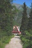 Высокогорный лагерь в лесе Стоковое Изображение RF