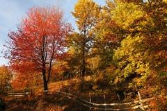 Высокогорный ландшафт в национальном парке Retezat Стоковое Фото