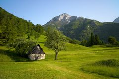 высокогорный ландшафт зеленого цвета травы стоковая фотография rf