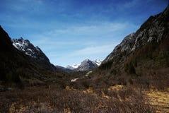 высокогорный лужок jokul Стоковые Фото