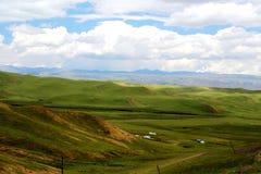Высокогорный пейзаж злаковика на плато Цинхая Тибета Стоковые Изображения RF
