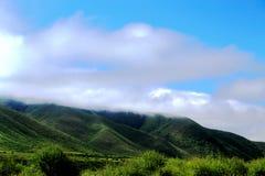 Высокогорный пейзаж злаковика на плато Цинхая Тибета Стоковые Фотографии RF