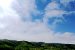 Высокогорный пейзаж злаковика на плато Цинхая Тибета Стоковое Изображение