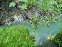 высокогорный поток Стоковые Фотографии RF