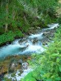 высокогорный поток Стоковые Фото